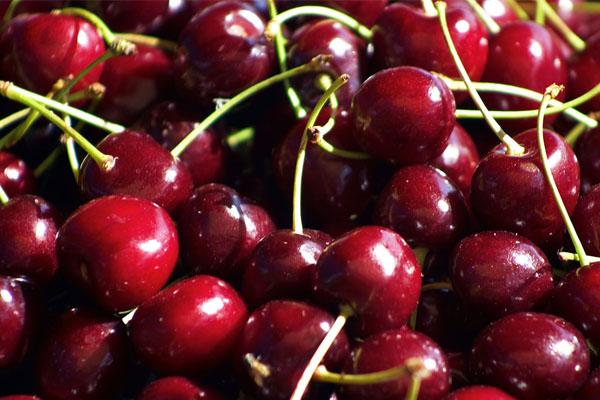 Trái cherry tốt cho sức khoẻ